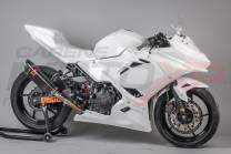 Motoxpricambi Race-Paket : Verkleidungen + Schnellverschluss + Screws