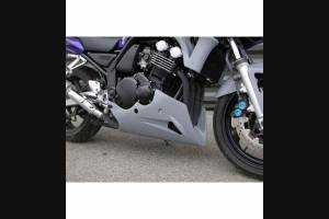 Puntale per Yamaha Fazer 600 98/01