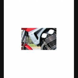 lateral fairings for Yamaha Fazer 600 98/01