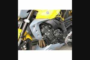 Griglia Radiatore Protezione del Radiatore per Yamaha FZ1-N 2006-2015 FZ1-S 2006-2015