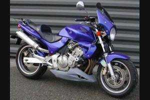 Puntale per Honda Hornet 600 1998 - 2002 - MXPCNK234