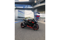 carenado barnizado Kawasaki Zx10R 2016 - 2020 + tornillos, tornillos rapidos MXPCRV13157