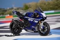 Painted Race Fairings Yamaha R1 2015 - 2019 - MXPCRV13874